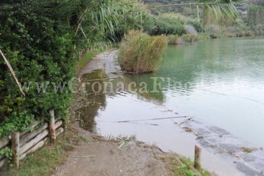 Lago d'Averno (9)